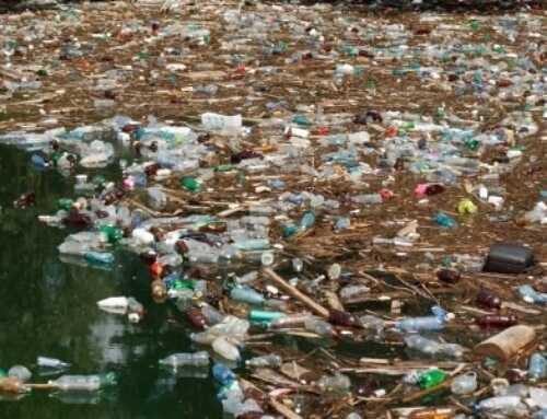 Auffüllen statt Wegwerfen – Alternative zum Plastikwahn