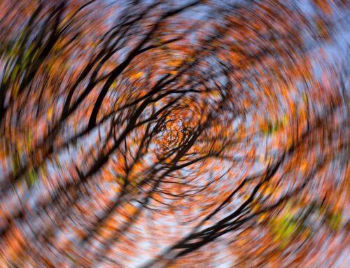 Schwindel – Wenn die Welt sich dreht: Orthostatische Dysregulation